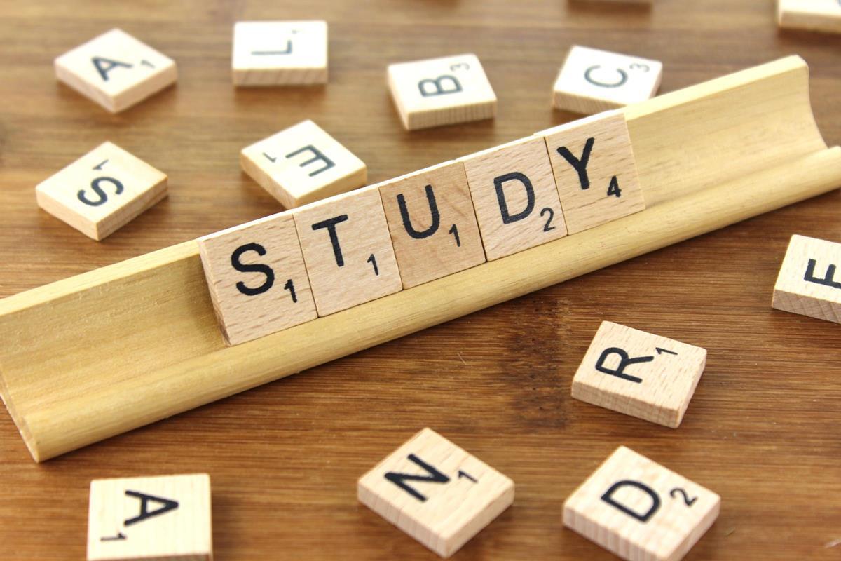 study students break should