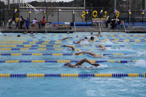 Swimming: Matadors defeat Los Altos HS in last home meet