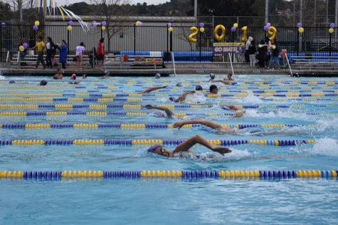 Swimming: Matadors defeat Los Altos HS in last home meet