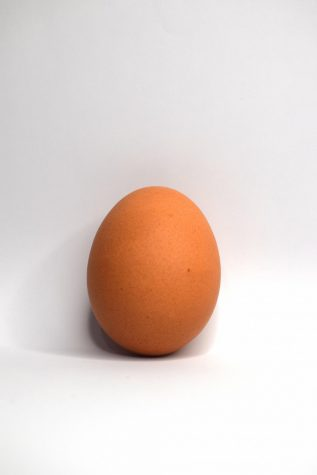 Cracking the egg: The era of the Instagram-famous World Record Egg
