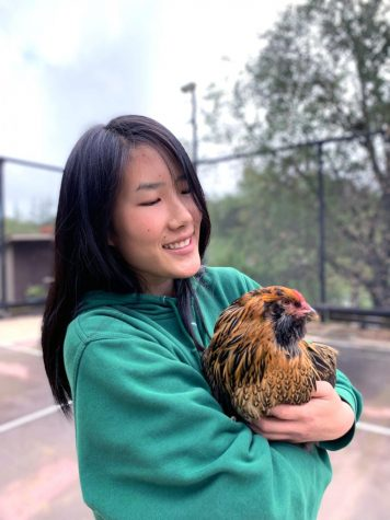 Senior Jessica Ji with her pet chicken Evil