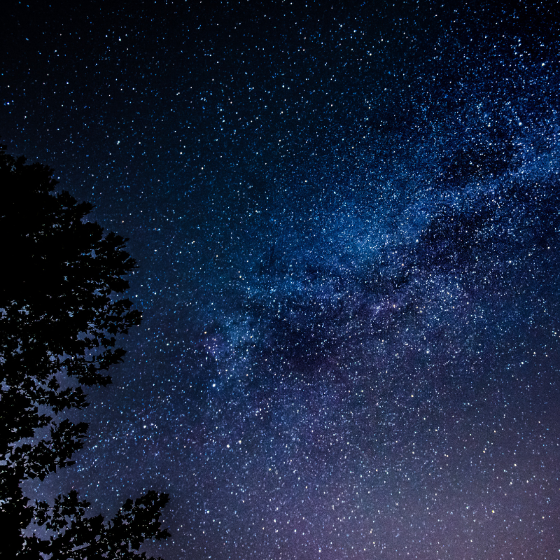 A starry night: Astronomy and Astrophysics Club host stargazing events