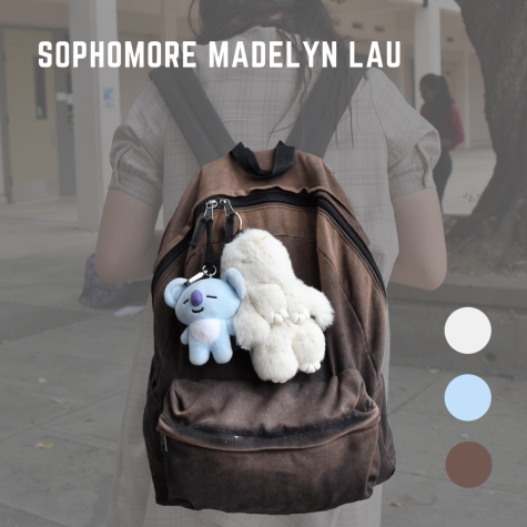 Sophomore Madelyn Lau's school bag