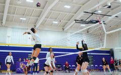 Girls Volleyball: The Matadors narrowly lose to Gunn HS in a tight five set match
