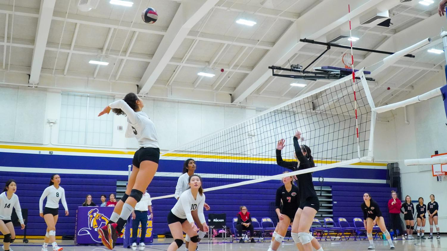 Junior Carina Johnson hopes to score and take the lead against Gunn HS in the fifth set. Photo by Justine Ha