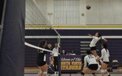Girls Volleyball: The Matadors fail to break losing streak against  Los Gatos HS