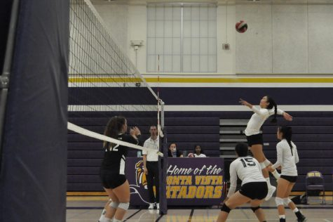 Girls Volleyball: The Matadors fail to break losing streak against  Los Gatos HS