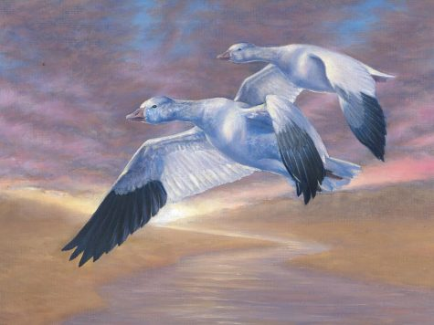 In a painting by Sophie Ye, a pair of geese fly above a river.