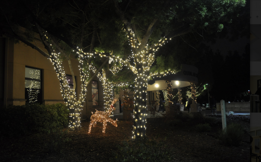 The+Quinlan+Center+is+decorated+for+the+holidays%2C+with+lights+wrapped+around+pillars+and+nearby+trees%2C+as+well+as+moving+animal+decorations+scattered+about.