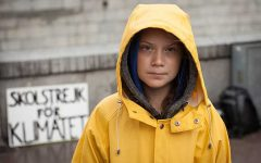 The Greta Thunberg hate train