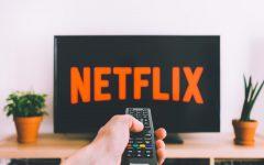 MVHS through Netflix