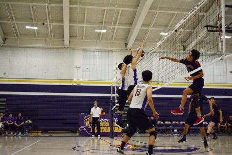Boys volleyball: MVHS takes commanding win against Lynbrook HS