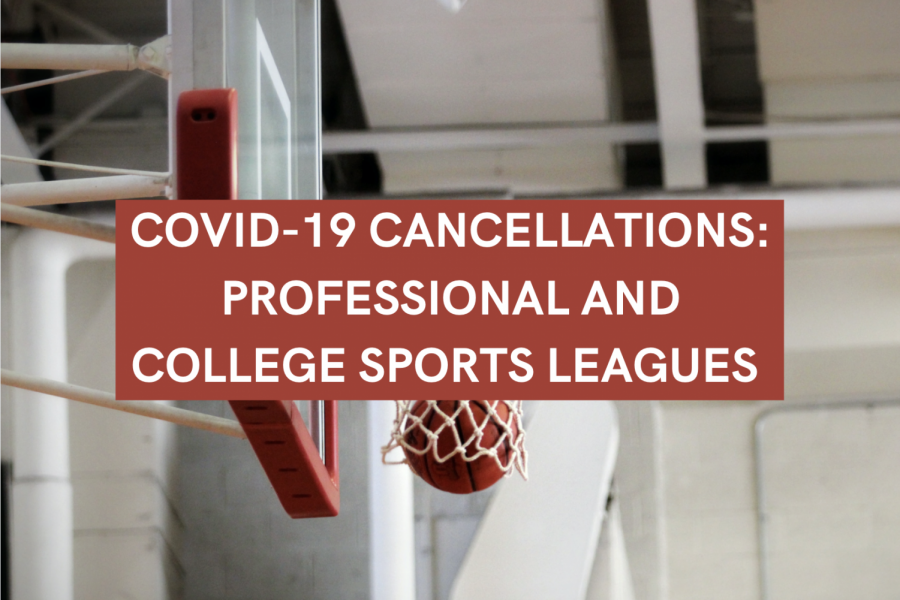 Professional and college sports leagues cancel events