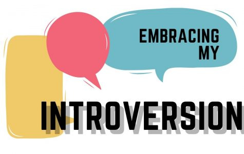 Embracing my introversion