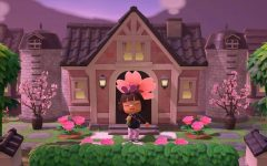 """""""Animal Crossing: New Horizons"""" grows in popularity"""