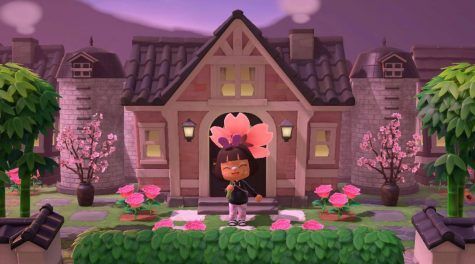 """Animal Crossing: New Horizons"" grows in popularity"