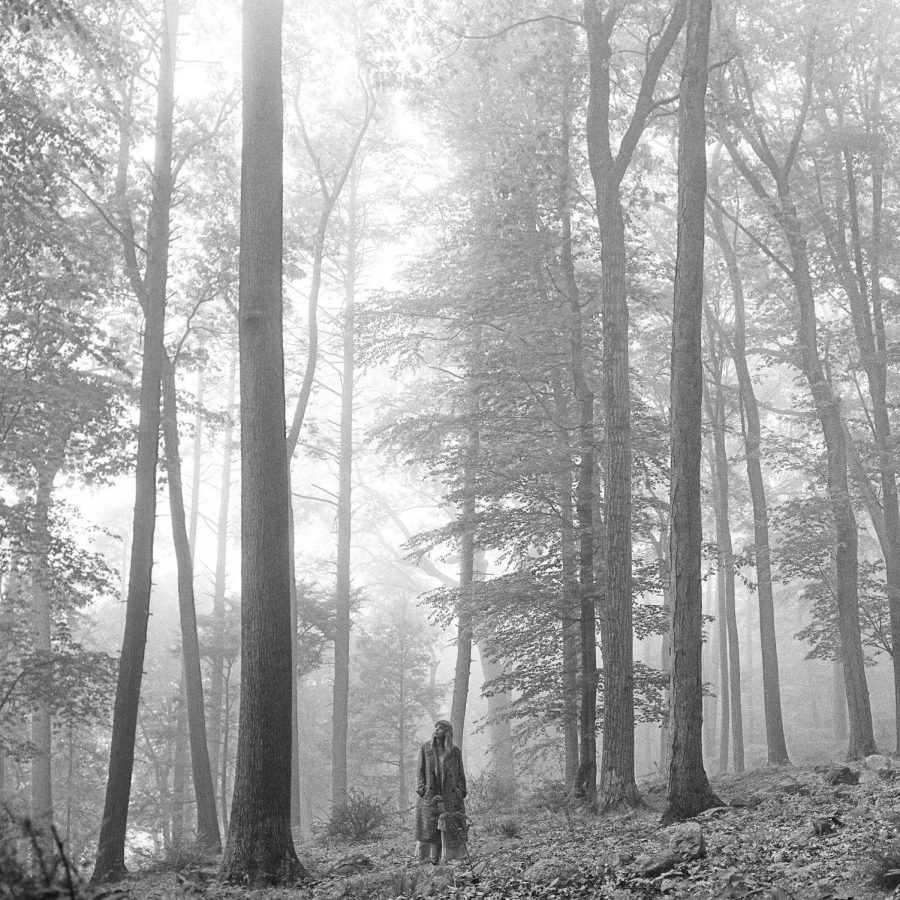 The folklore album cover features Taylor Swift standing alone in a forest, looking up at the trees.