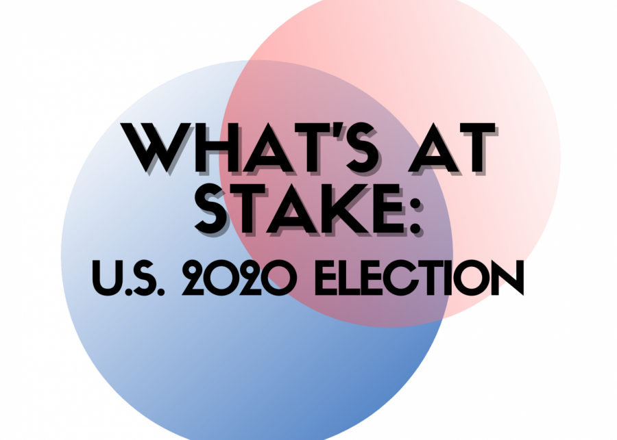 What's at stake: U.S. 2020 presidential election