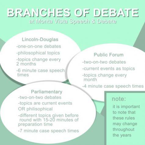 Debating through a screen