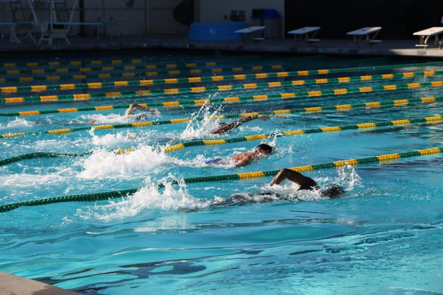 The Boys Water Polo team swim 25, 50 and 100 yards in their own lanes during practice to maintain social distancing. Montgomery chose to get his players into shape through conditioning before having them individually practice with balls without sharing.