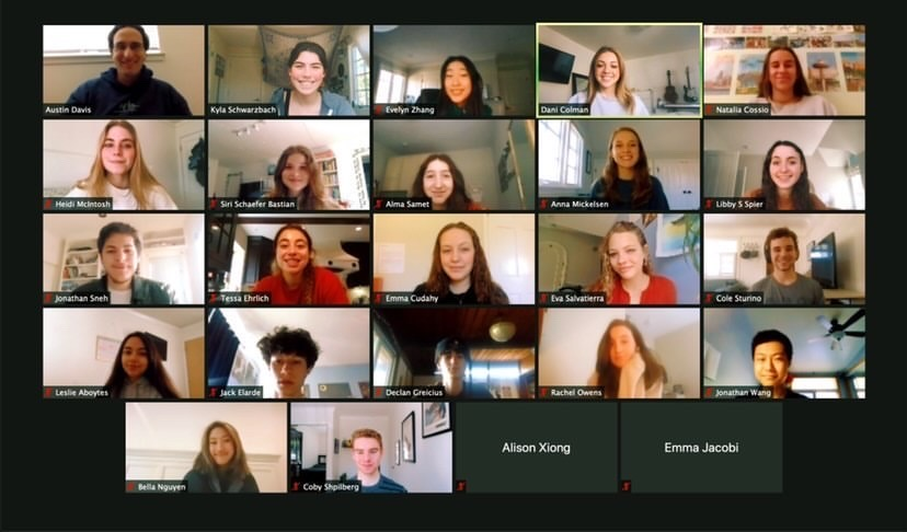 A+Zoom+meeting+screenshot+of+Paly+Responsive+Inclusive+Safe+Environment+%28RISE%2C+%40palyrise%29%2C+a+student+task+force+committed+to+the+goals+of+sexual+violence+education%2C+prevention+and+justice%2C+is+displayed.