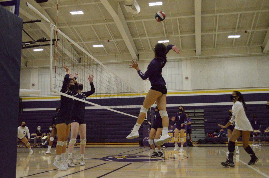 With two blockers in front of her, senior Marissa Jensen prepares to spike the ball across the court. Photo by Irene Tang