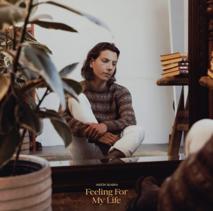 The cover of Anson Seabras EP, Feeling For My Life, features him sitting on the floor, looking at himself through a mirror